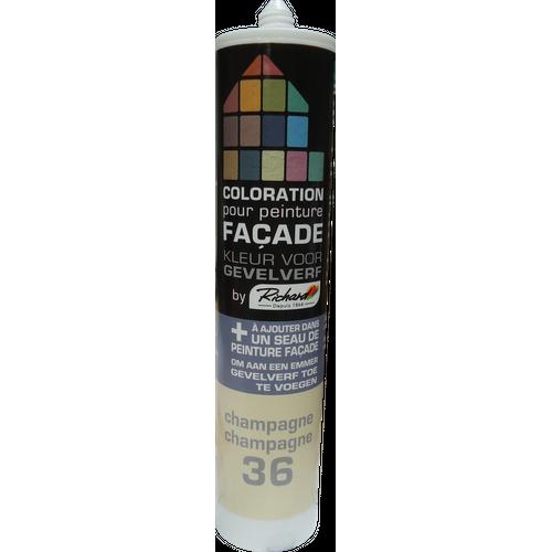 Colorant pour peinture façades Richard champagne 450 gr